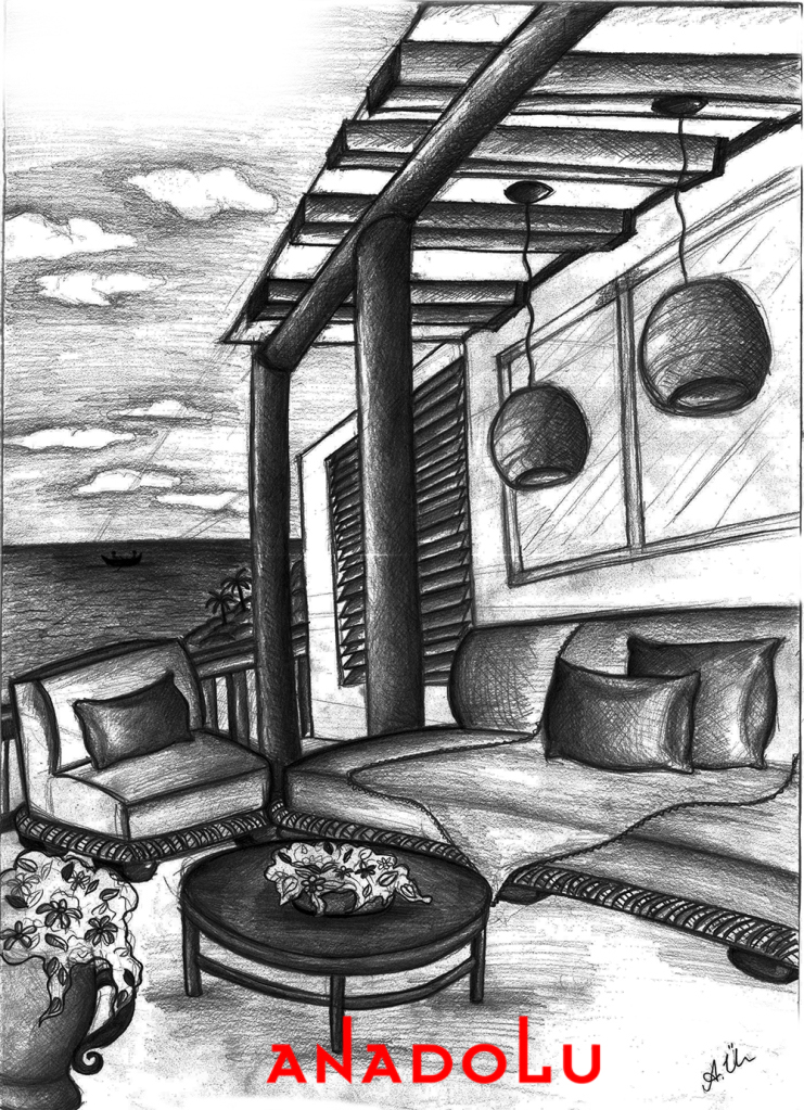 karakalem Kamelya Çizimleri Çanakkalede
