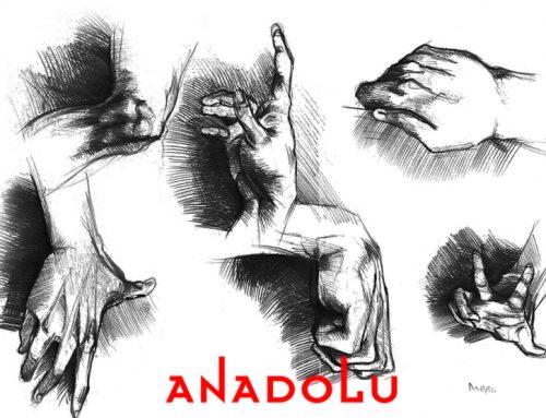 Çanakkaledeki Kuru Kalem Hayvan Çizim Kitabı